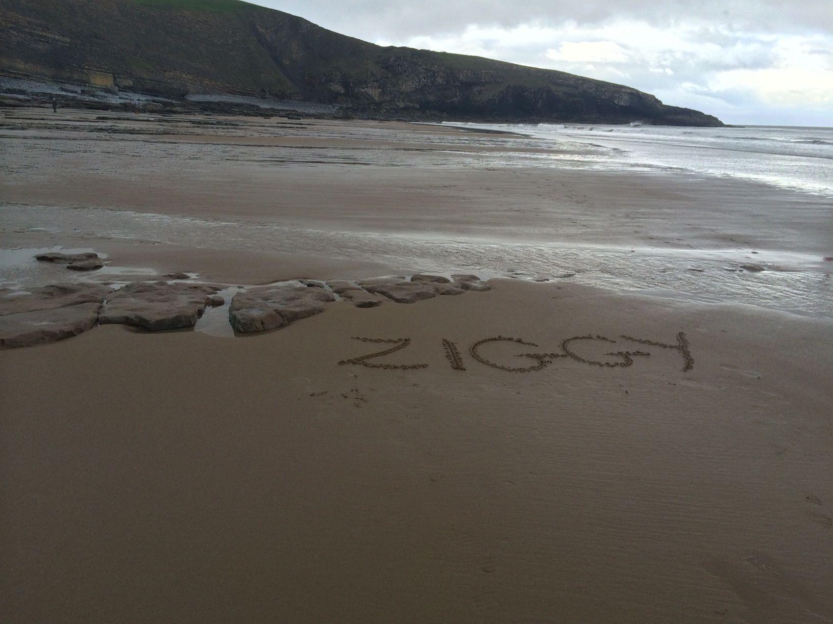 Beach photo Ziggy temporary memorial