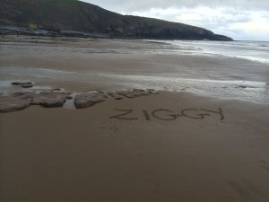 Beach photo Ziggy temporary memorial